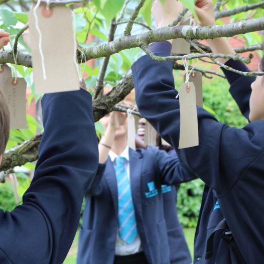 Year 10 GCSE Art create a Wish Tree inspired by Yoko Ono